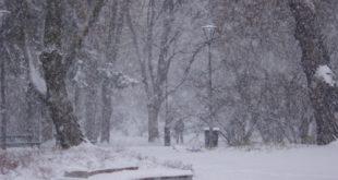 К середине недели Липецк заметет снегом
