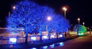 Глава Липецка оценил новогоднее убранство города