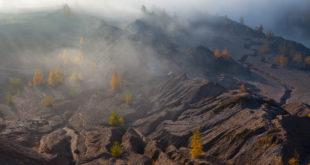 Липецкий фотограф Юрий Сорокин - победитель в конкурсе National Geographic
