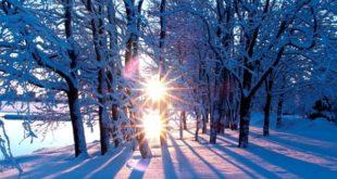 Погода в Липецке в ближайшие останется морозной