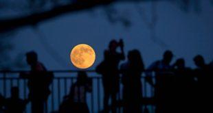 В 2017 году произойдут два солнечных и два лунных затмения