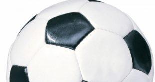 Школьники Липецкого района сразились в футбол