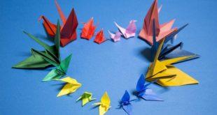 Инвалидов в Липецкой области научат мастерить в технике «оригами»