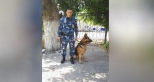 Служебная собака раскрыла преступление по«горячим следам»