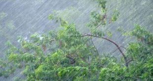 В Липецке снова передали штормовое предупреждение