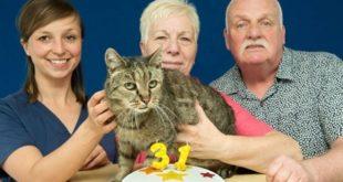 В Великобритании умер старейший в мире кот