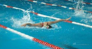 Единый день плавания в Липецкой области перенесли на 9 декабря