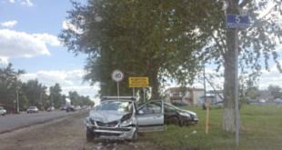 По вине пьяных водителей в Липецкой области погибли 65 человек