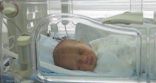 32 малыша в среднем ежедневно появлялись на свет в Липецкой области