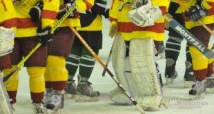 Хоккейный турнир пройдет в Усмани
