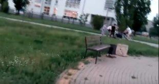 «Это парк, мрази! Сбил ребенка!». Последствия ДТП спятилетней девочкой сняли навидео