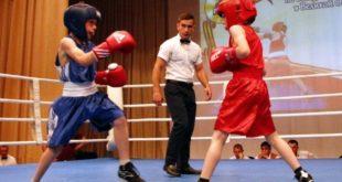 В Тербунах прошел юношеский турнир по боксу