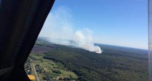 Пожар  в заповеднике в Липецкой области потушили