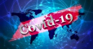 Четыре новых случая COVID-19 выявлены в Липецкой области
