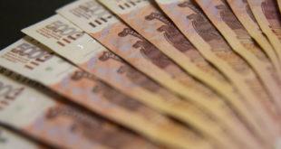 Липецкие пищевики претендуют на льготные займы до 300 миллионов рублей