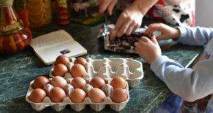 Огород на подоконнике и пироги: чем занять ребенка на каникулах