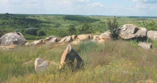 Откуда появился застывший зоопарк липецкой Долины камней?