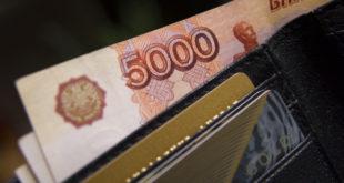 Более 70 миллионов рублей получат липецкие соцработники от Правительства страны